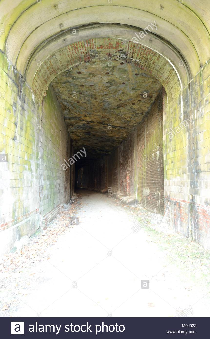Inside Tunnel #12 on the North Bend Rail Trail in Ritchie County, West Virginia. Former Railroad Tunnel now used - Stock Image