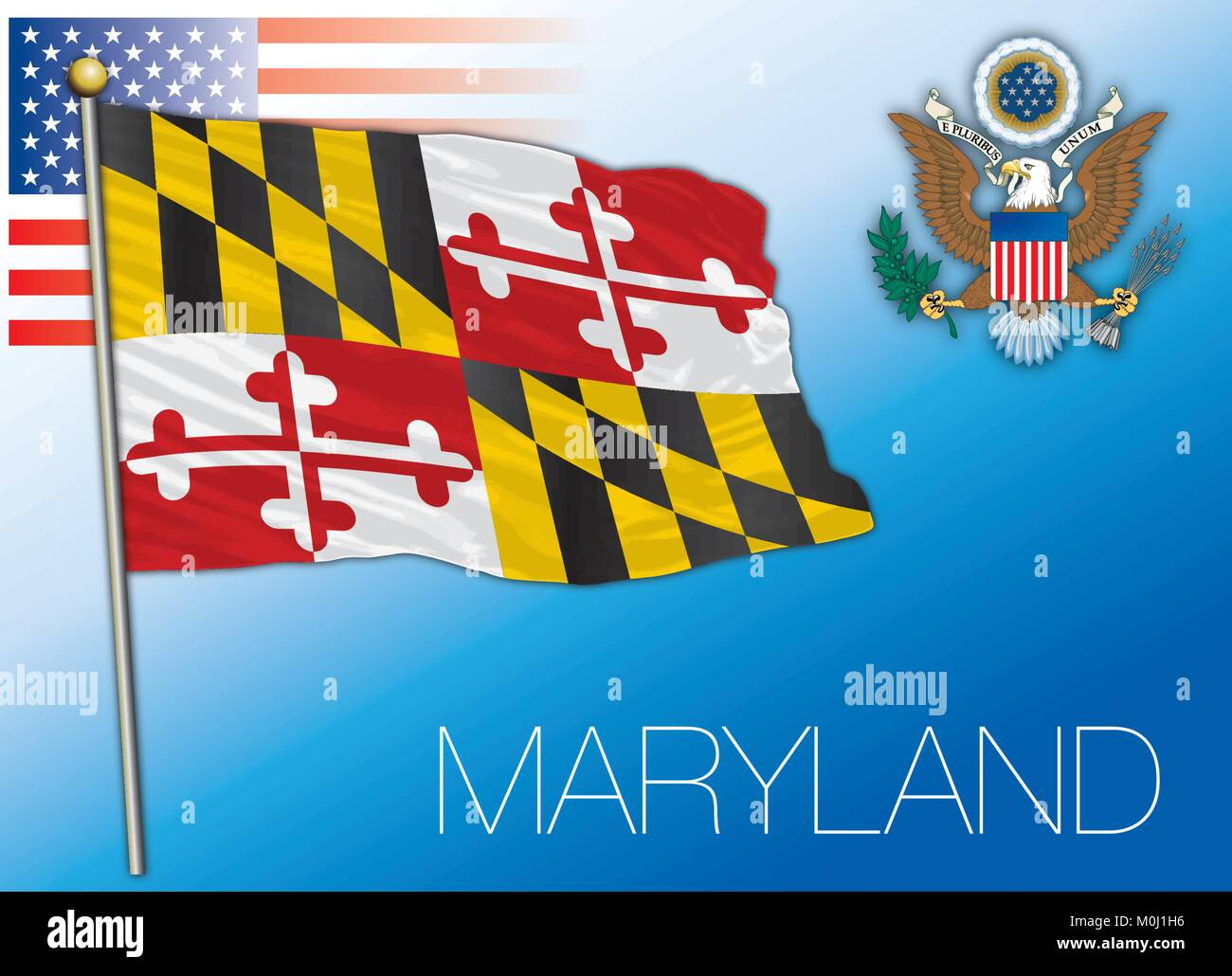 Maryland federal state flag, United States - Stock Vector