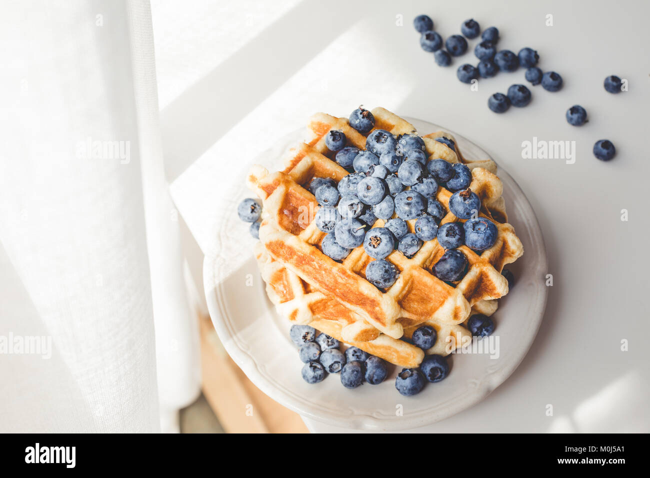 plate of tasty fresh waffles with blueberries under sun rays Stock Photo