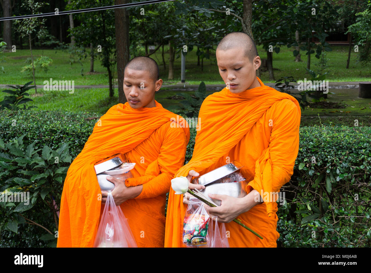 Asia,Thailand,Chiang Mai,buddhist monks - Stock Image