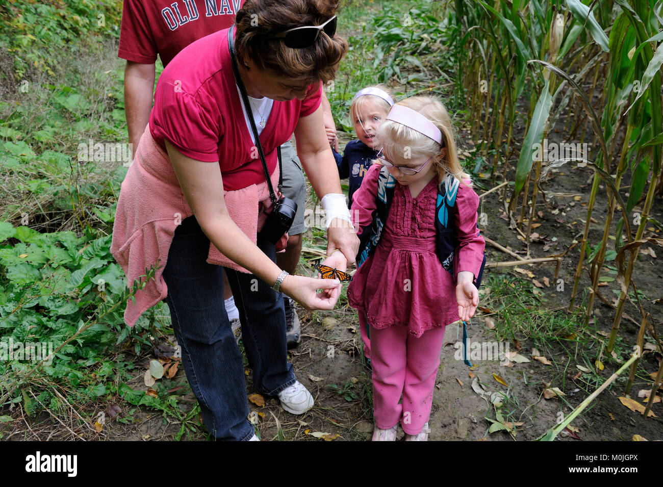 A grandmother shows her two granddaughters a monarch butterfly - Stock Image