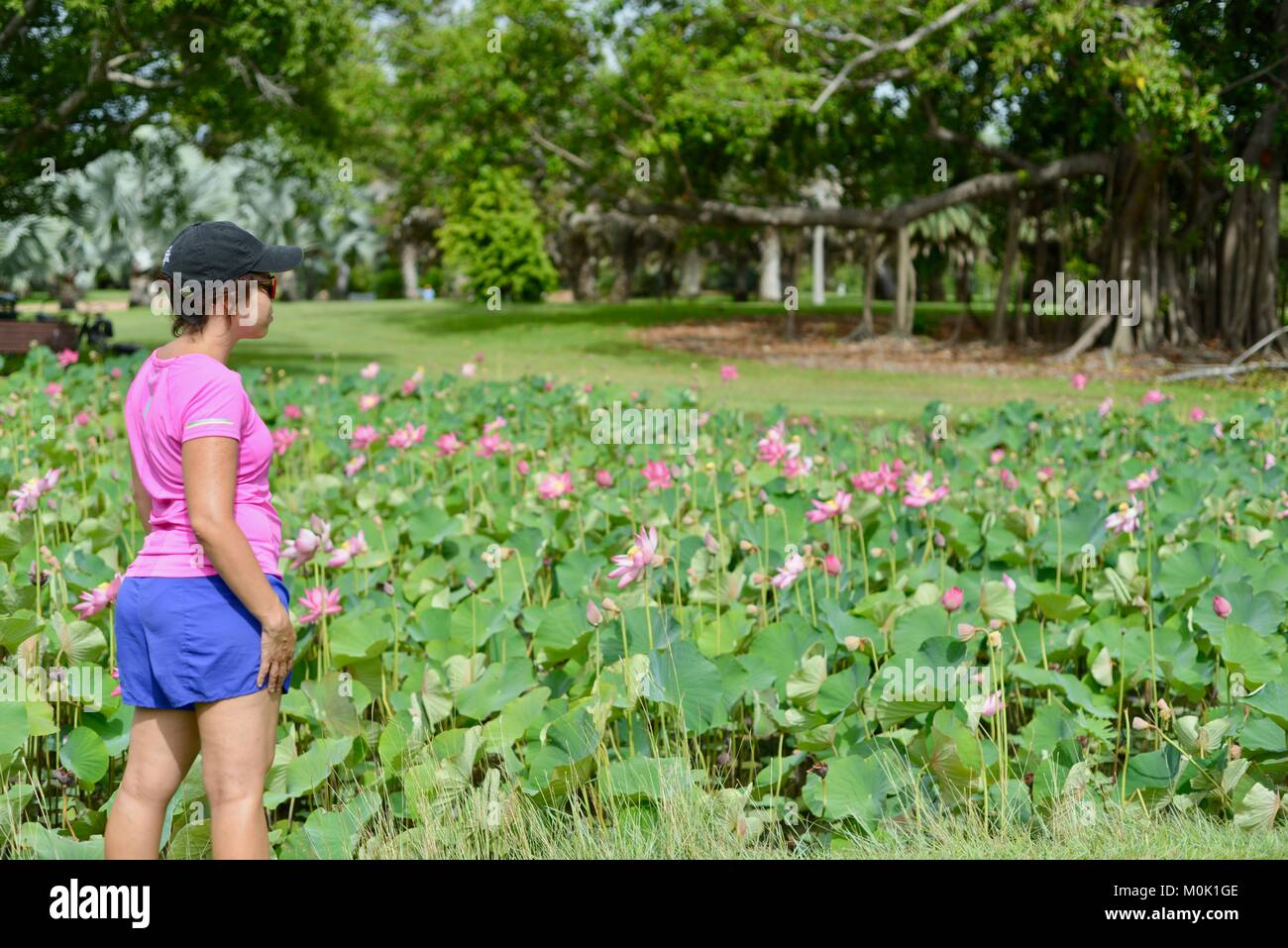 Women with pink sports top enjoying Anderson Park Botanic Gardens, Townsville, Queensland, Australia Stock Photo