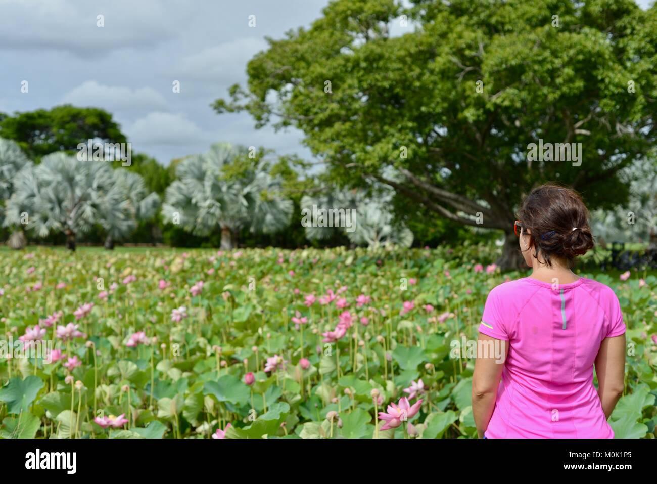Women with pink sports top enjoying Anderson Park Botanic Gardens, Townsville, Queensland, Australia Stock Photo