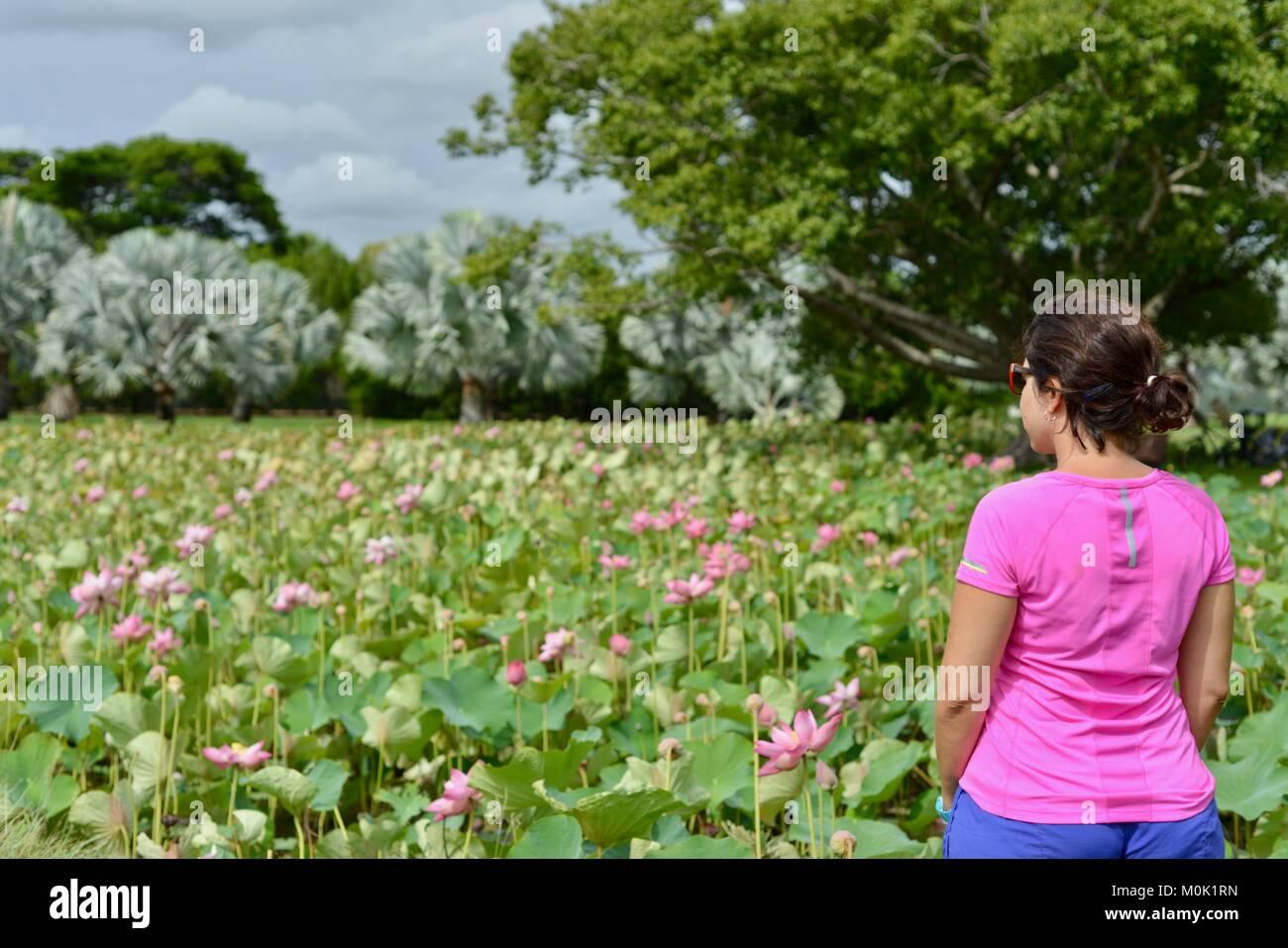 Women with pink sports top enjoying Anderson Park Botanic Gardens, Townsville, Queensland, Australia - Stock Image
