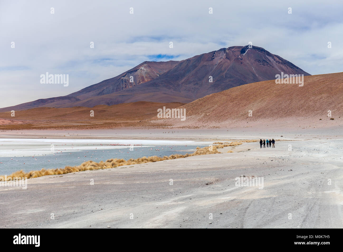 Laguna Hedionda located in the Bolivian altiplano near the Uyuni Salt Flat in Bolivia, South America Stock photo - Stock Image