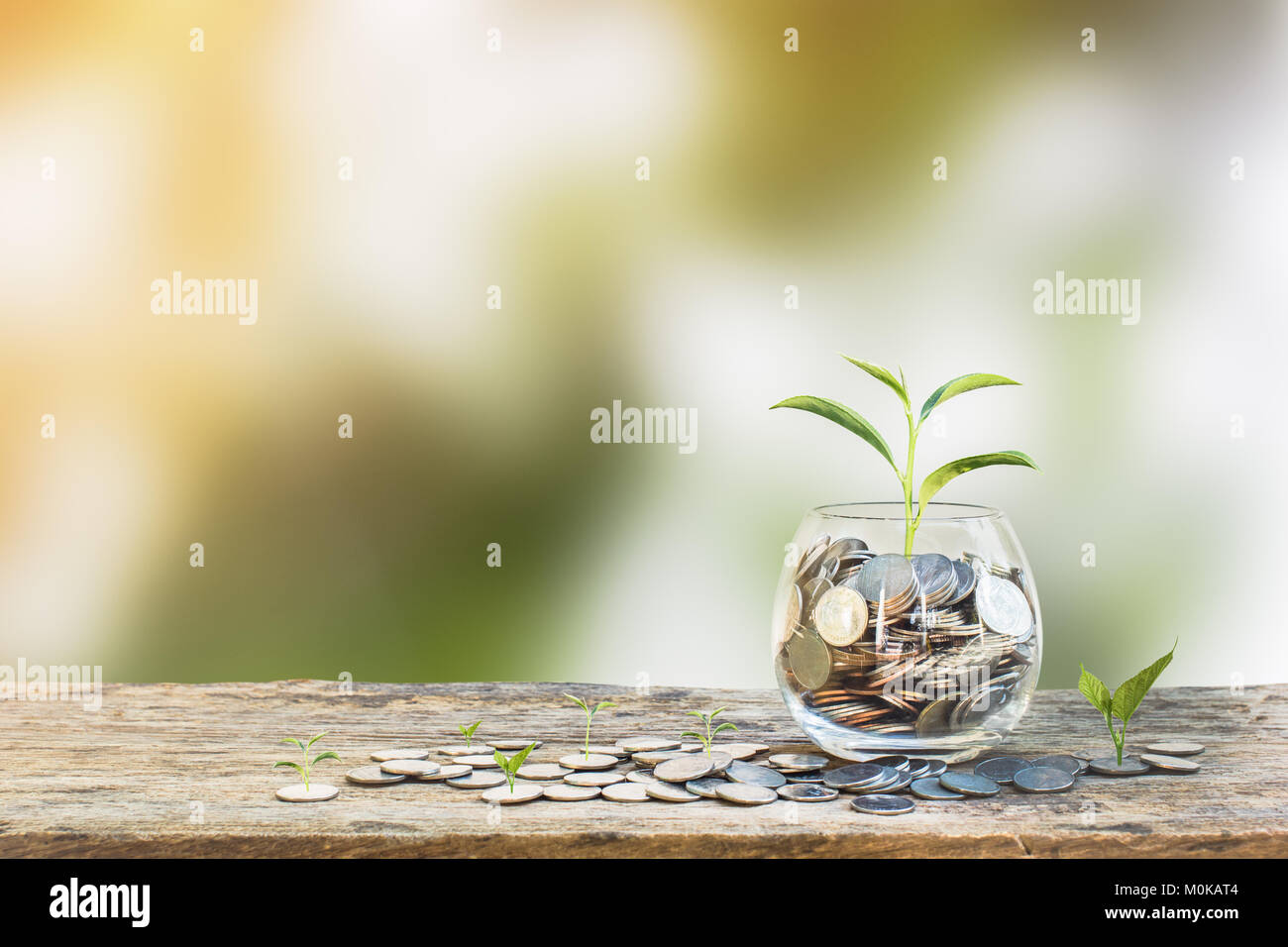 Investment concept. Growth plant on coins in clear glass bottle on wooden table with green blurred background and - Stock Image