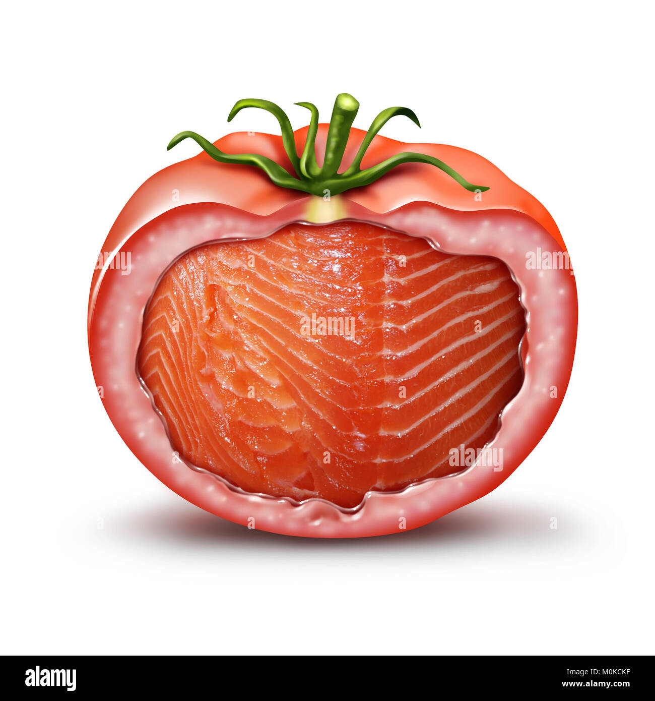 Hybrid food and GMO nutrition concept as a tomato with salmon fish inside as an agriculture genetic breeding and - Stock Image