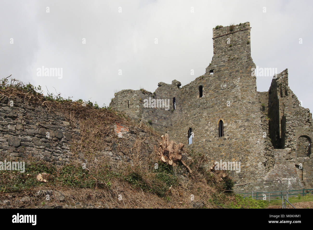 The remains of Carlingford Castle County Louth Ireland. The Norman castle in Ireland is also known as St John's - Stock Image