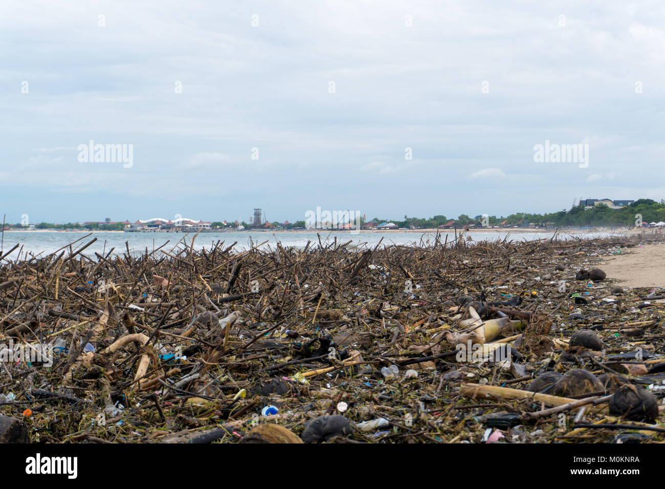 Pollution concept. Beach polluted with plastic garbage and tree branches Stock Photo