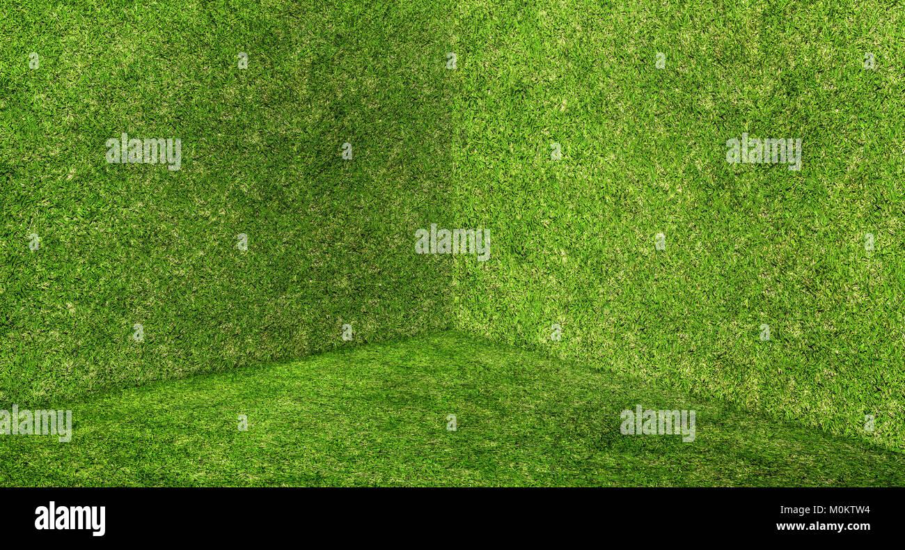 Empty green grass wall and floor corner studio room background,Mock ...