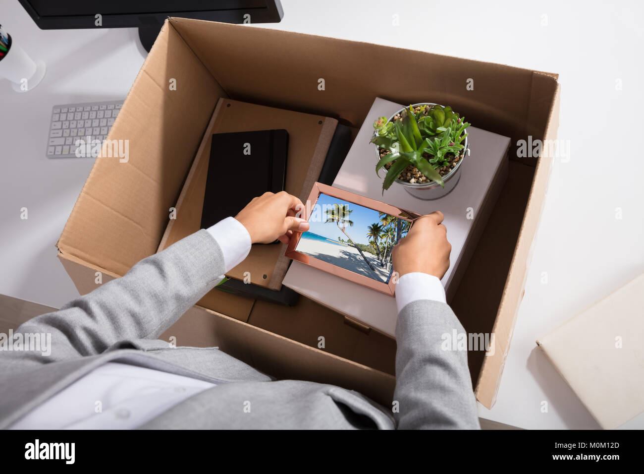 Close-up Of A Businesswoman Packing Picture Frame In Cardboard Box At Workplace - Stock Image