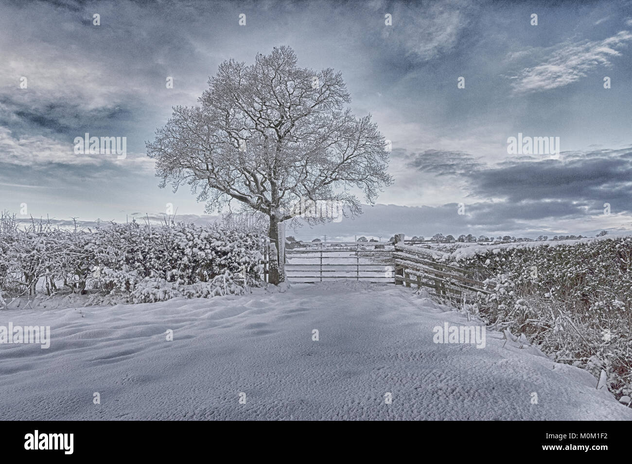 After a heavy snowfall in County Durham the fields and the surrounding countryside are covered in a heavy blanket - Stock Image