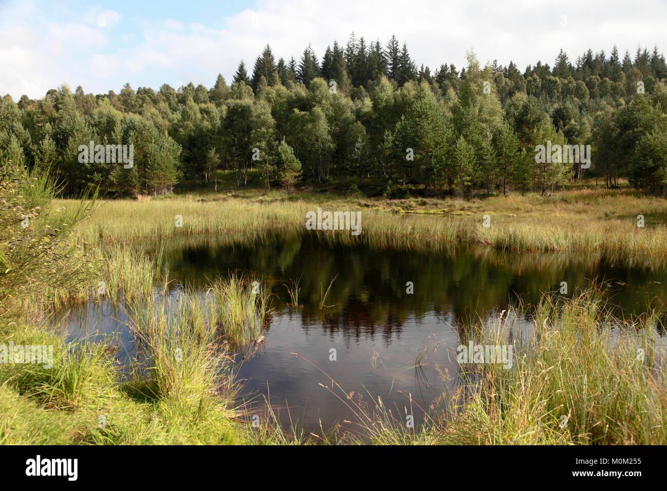 The Fairy Lochan on the Glen Tanar estate near Aboyne, Aberdeenshire, Scotland - Stock Image