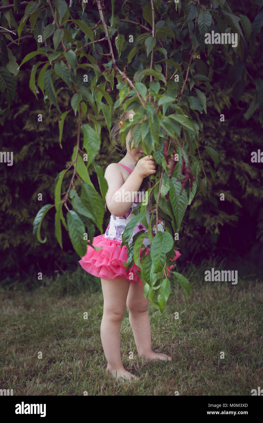 Little girl in swimsuit, hiding behind the low hanging branches of a tree - Stock Image
