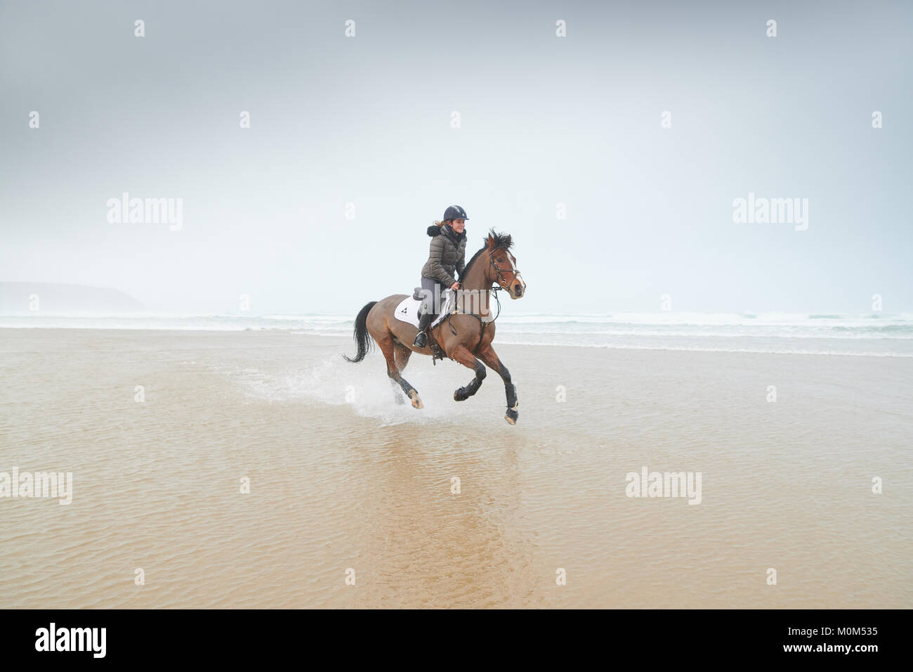 Horse rider riding from right to left through low tide, with noticeable water spray behind horse. Coast and overcast - Stock Image