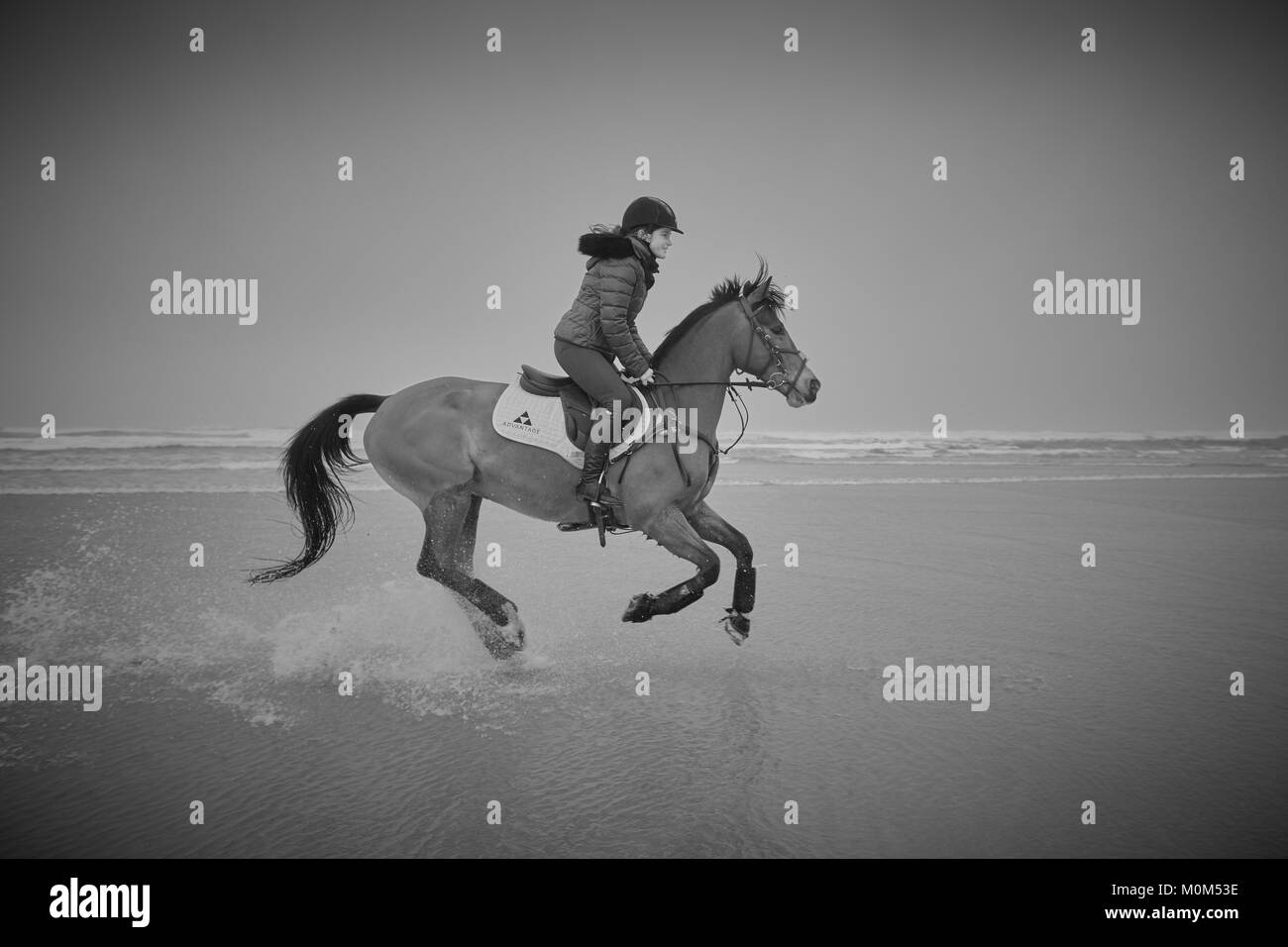 A female horse rider riding from left to right over low tide on a beach captured with some water rising off the - Stock Image