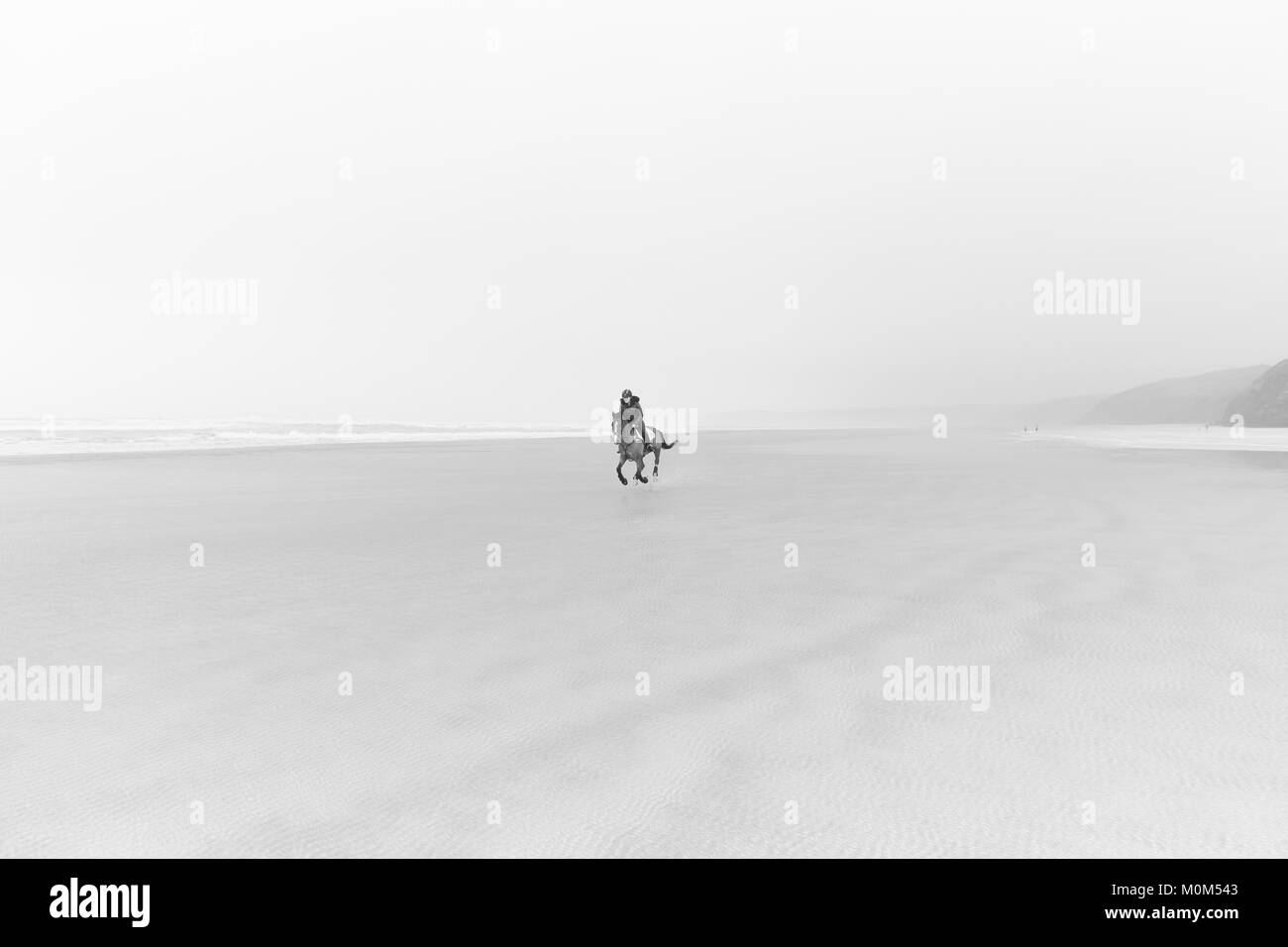 Horse rider riding towards the camera from a distance across low tide. Nice horizon with the sea mist obscuring - Stock Image