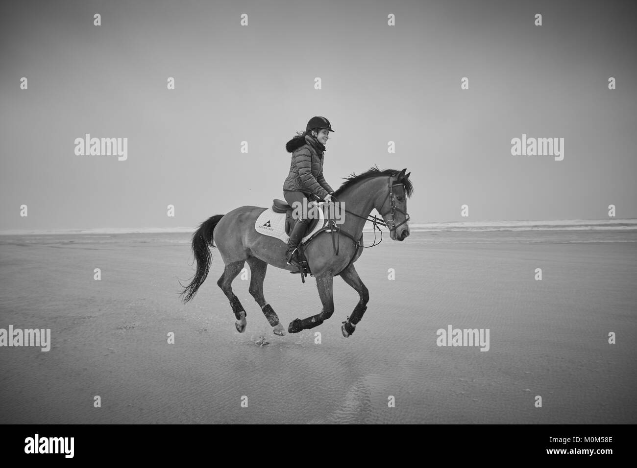 A female horse rider riding from left to right over low tide on a beach, captured with all four legs off the ground. - Stock Image