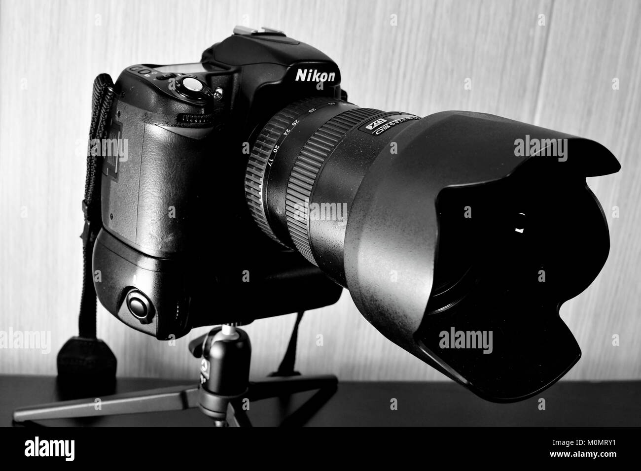 Nikon DSLR D80 and battery pack and Lenses on display and Christmas decorations as well - Stock Image