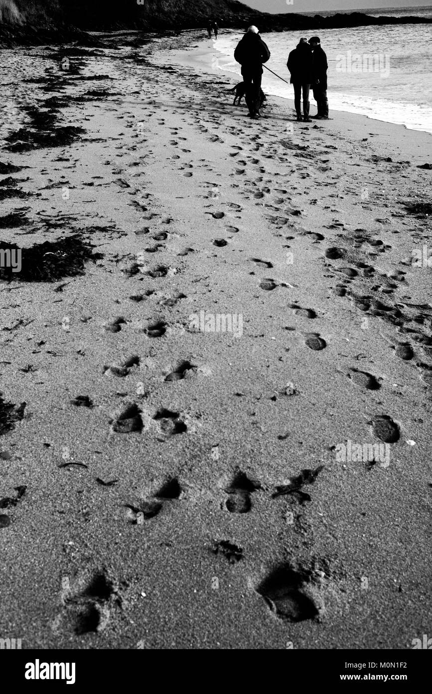 Footsteps are imprinted in the sand of Towan Beach, near Portscatho on the Roseland Peninsula, in Cornwall, Britain - Stock Image