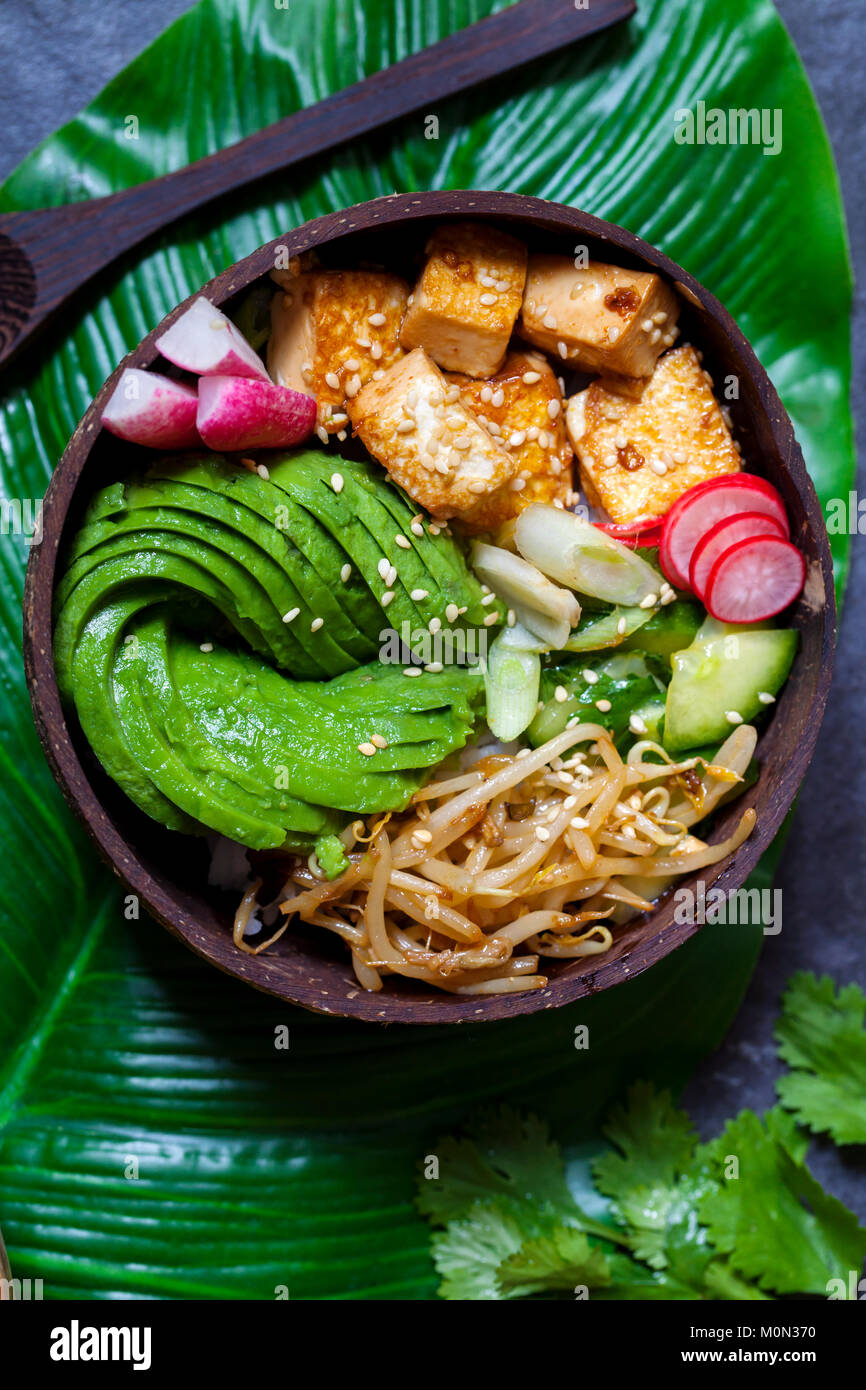 Vegan bowl with avocado, silky tofu, bean sprouts and pickled vegetables over rice - Stock Image