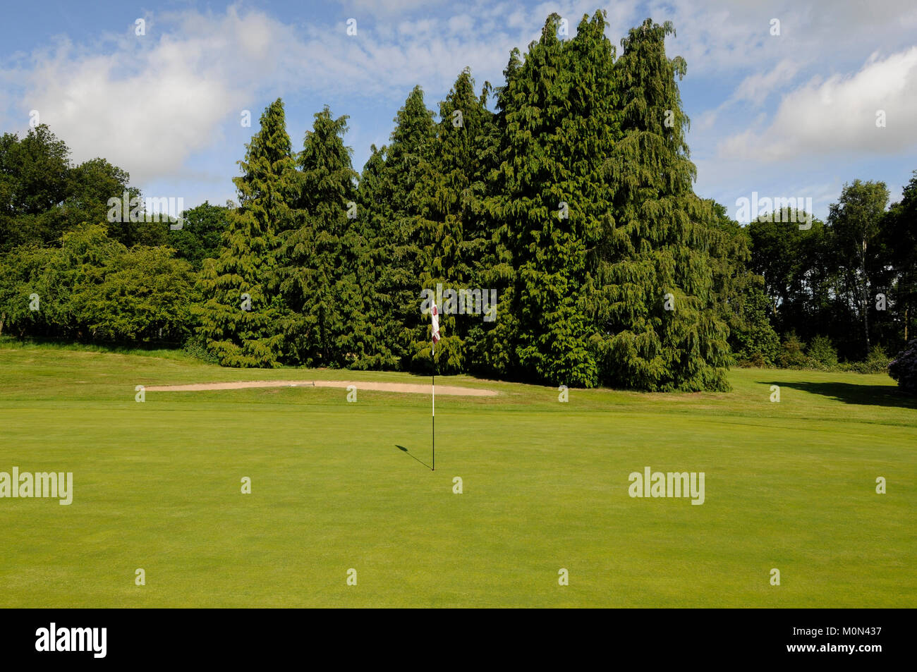 View across the 10th Green to bunker and trees, Hartley Wintney Golf Club, Hartley Wintney, Hampshire, England Stock Photo