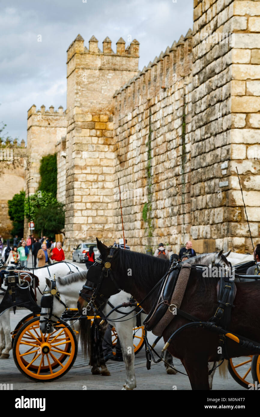 Horse drawn carriages and defensive walls, Reales Alcazares, Seville, Spain - Stock Image