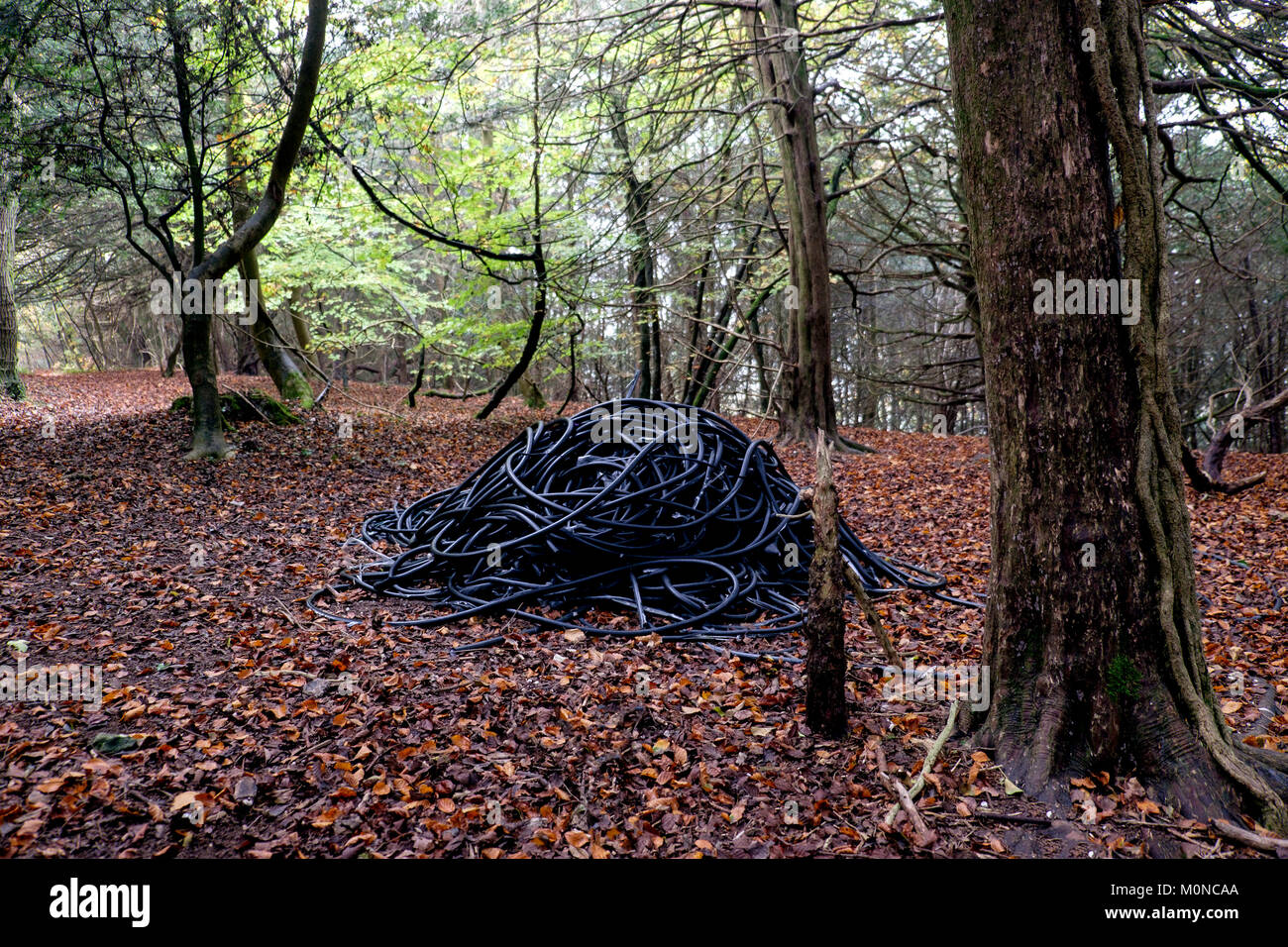 A pile of discarded black rubber cabling waster flytipped or dumped in woodland in the Hampshire countryside. - Stock Image