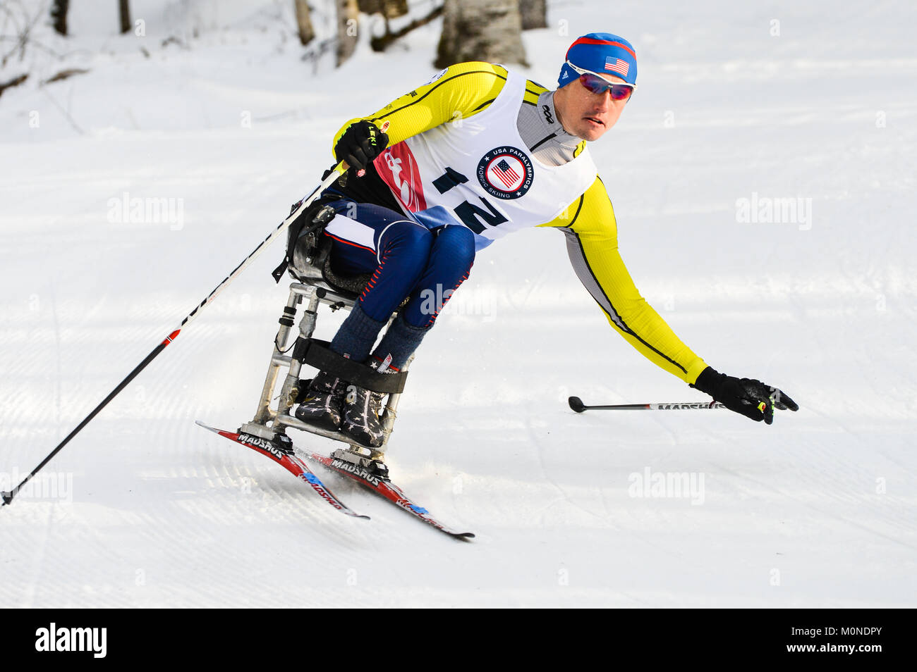 Paralympic cross country ski racer at 2016 U.S. Paralympics Sit Ski races, Craftsbury Outdoor Center, Craftsbury, - Stock Image