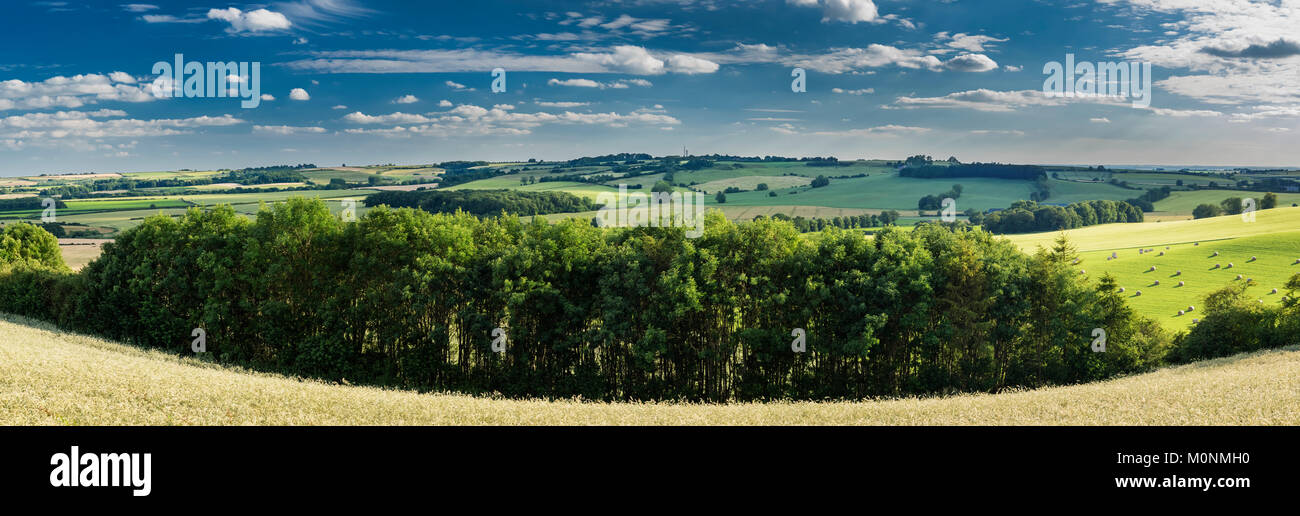 A summer evening on the Lincolnshire Wolds, the rolling hill uplands underlain by Cretaceous sedimentary rocks, - Stock Image