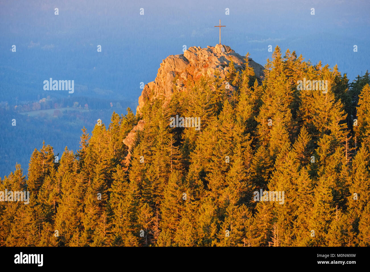 Kleiner Osser in the morning light,view from Großer Osser,near Lam,Bavarian Forest,Upper Palatinate,Bavaria,Germany - Stock Image
