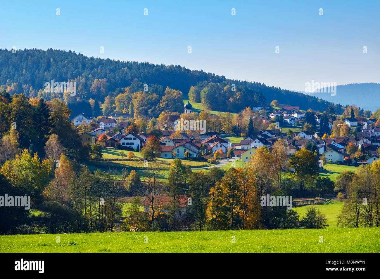 Grafenwiesen,Bavarian Forest,Upper Palatinate,Bavaria,Germany - Stock Image