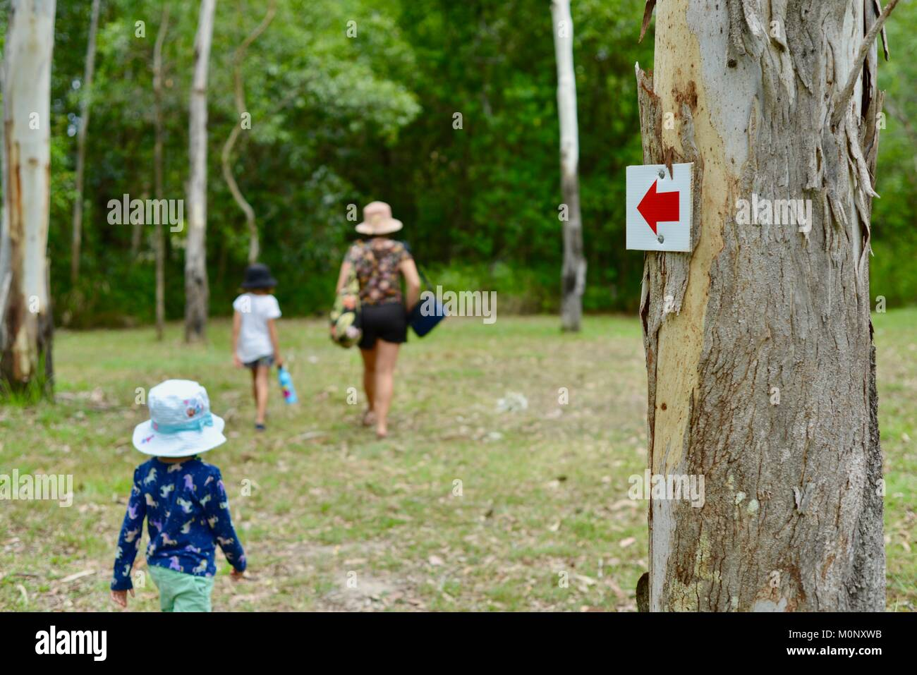 Women and child wali through grass field in forest with small child left behind, Herveys Range Heritage Tea Rooms, - Stock Image
