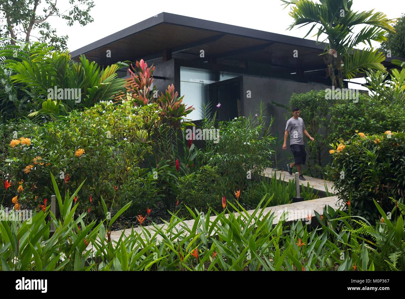 Costa Rica,Osa Peninsula,memeber Of The Staff Of The Ecolodge Kura Design  Villas,in Front Of A Contemporary Design Suite In The Middle Of A Tropical  Garden