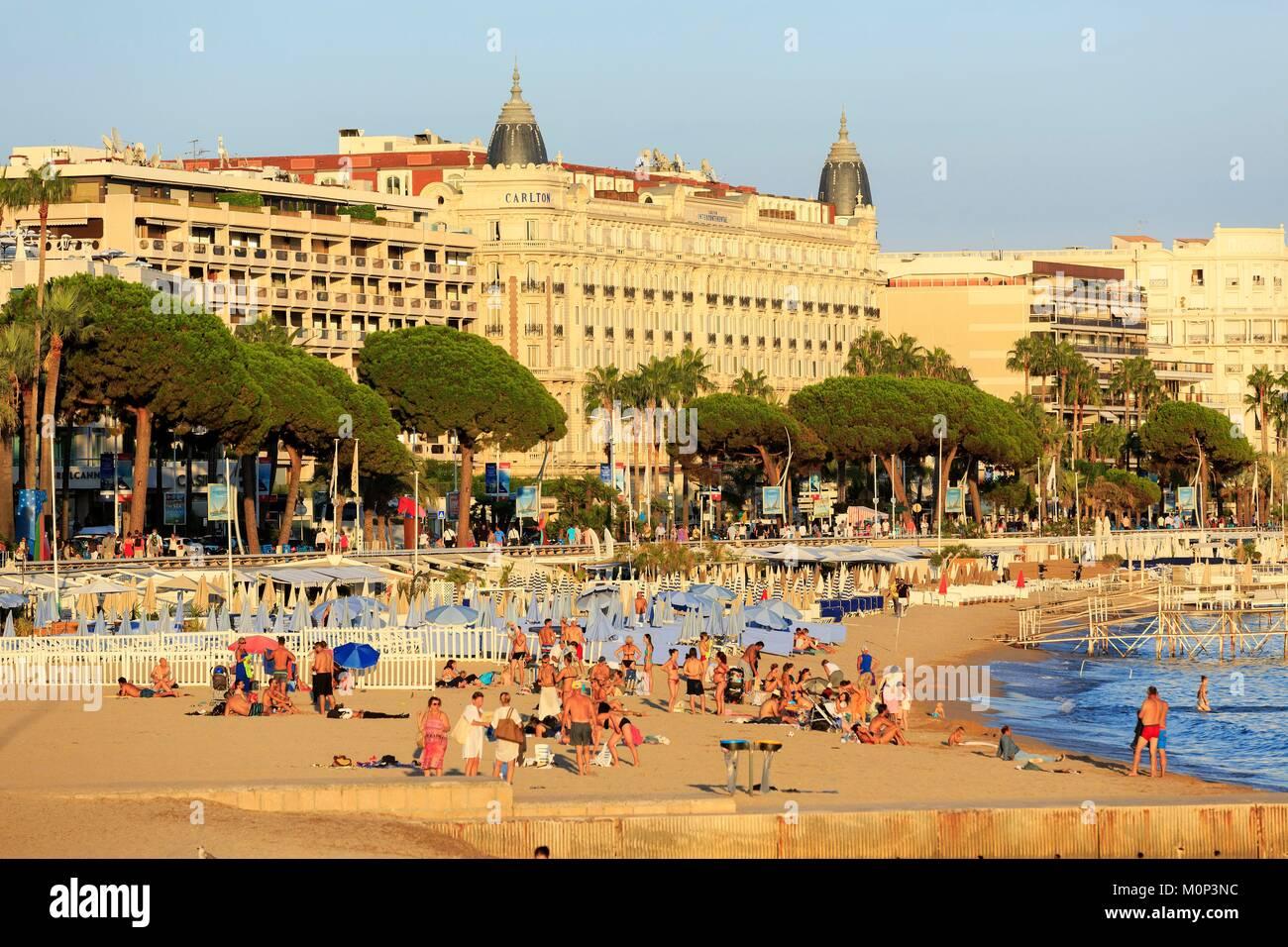 France,Alpes Maritimes,Cannes,beach of La Croisette - Stock Image