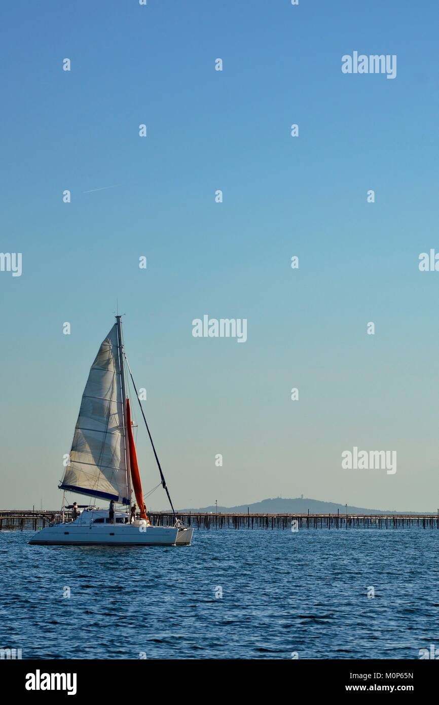 France,Herault,Bouzigues,lagoon of Thau,catamaran at anchor with oysters parks in the background - Stock Image