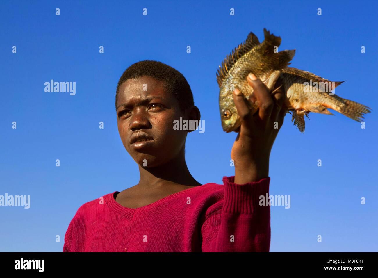 Ethiopia,Great Rift Valley,Awasa Lake,Fish seller near Awasa Lake (or Awassa),an endorheic bassin bordered by the - Stock Image