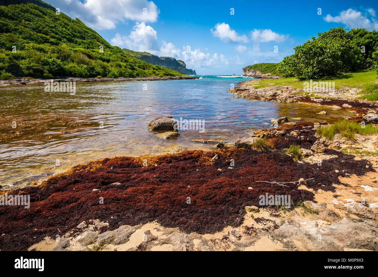 France,Caribbean,Lesser Antilles,Guadeloupe,Grande-Terre,Anse-Bertrand,natural landscape of the Porte d'Enfer - Stock Image