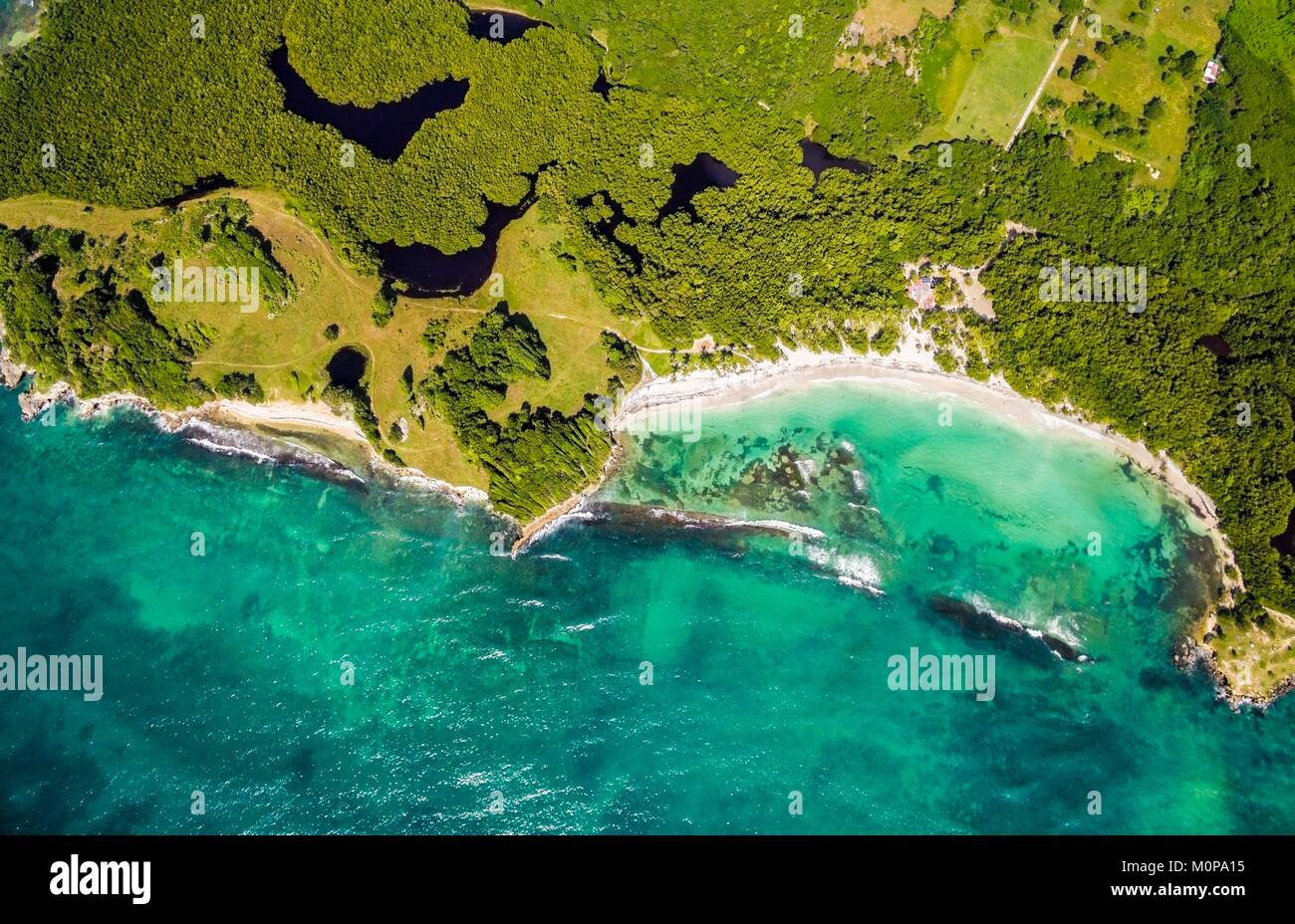 France,Caribbean,Lesser Antilles,Guadeloupe,Grande-Terre,Le Gosier,aerial view on the beach of Saint Félix,mangrove - Stock Image