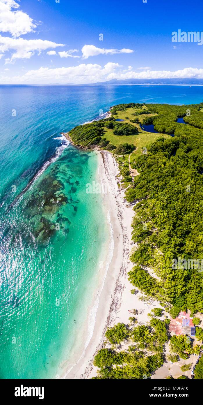 France,Caribbean,Lesser Antilles,Guadeloupe,Grande-Terre,Le Gosier,panoramic aerial view on the beach of Saint Félix,mangrove - Stock Image