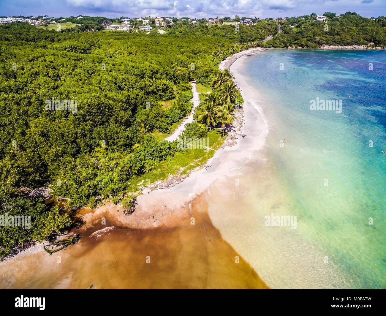 France,Caribbean,Lesser Antilles,Guadeloupe,Grande-Terre,Le Gosier,aerial view of the Salines beach,mangrove in - Stock Image