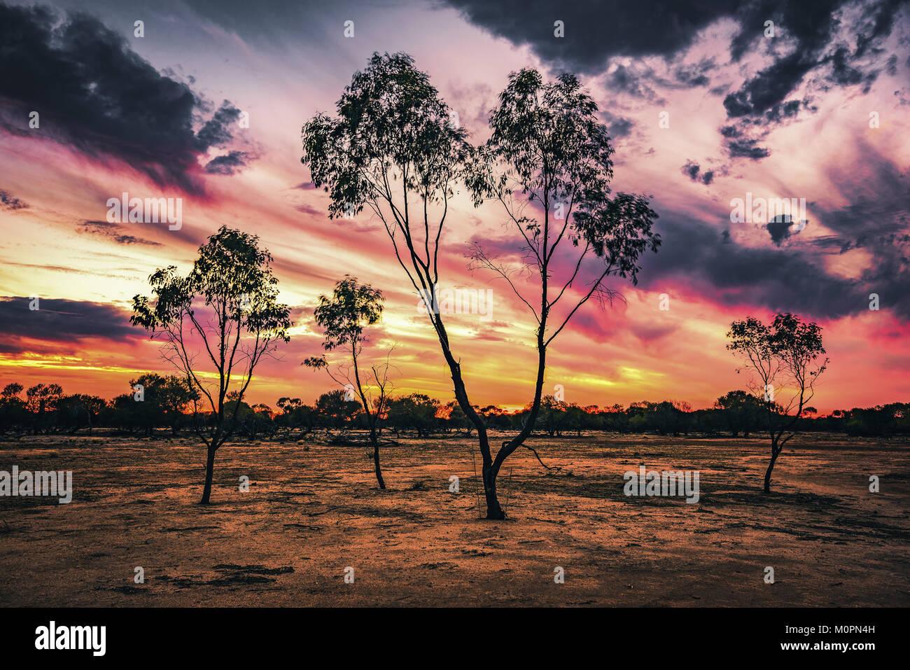 Sunset in Australian Golden outback - Stock Image