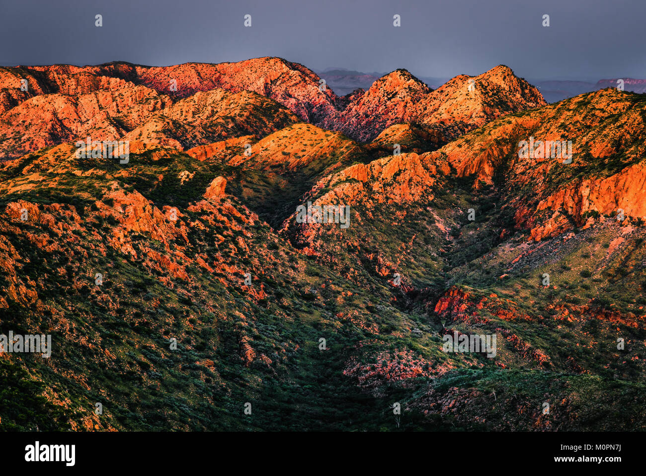 Sunset Light at Brinkley Bluff. West Macdonnell Ranges, Northern Territory - Stock Image