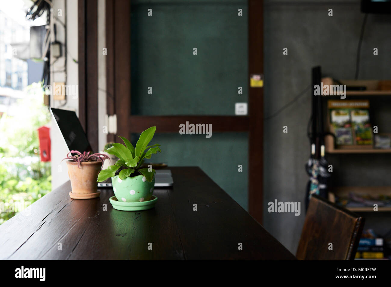 Laptop on wooden table with plants inside of the office. - Stock Image