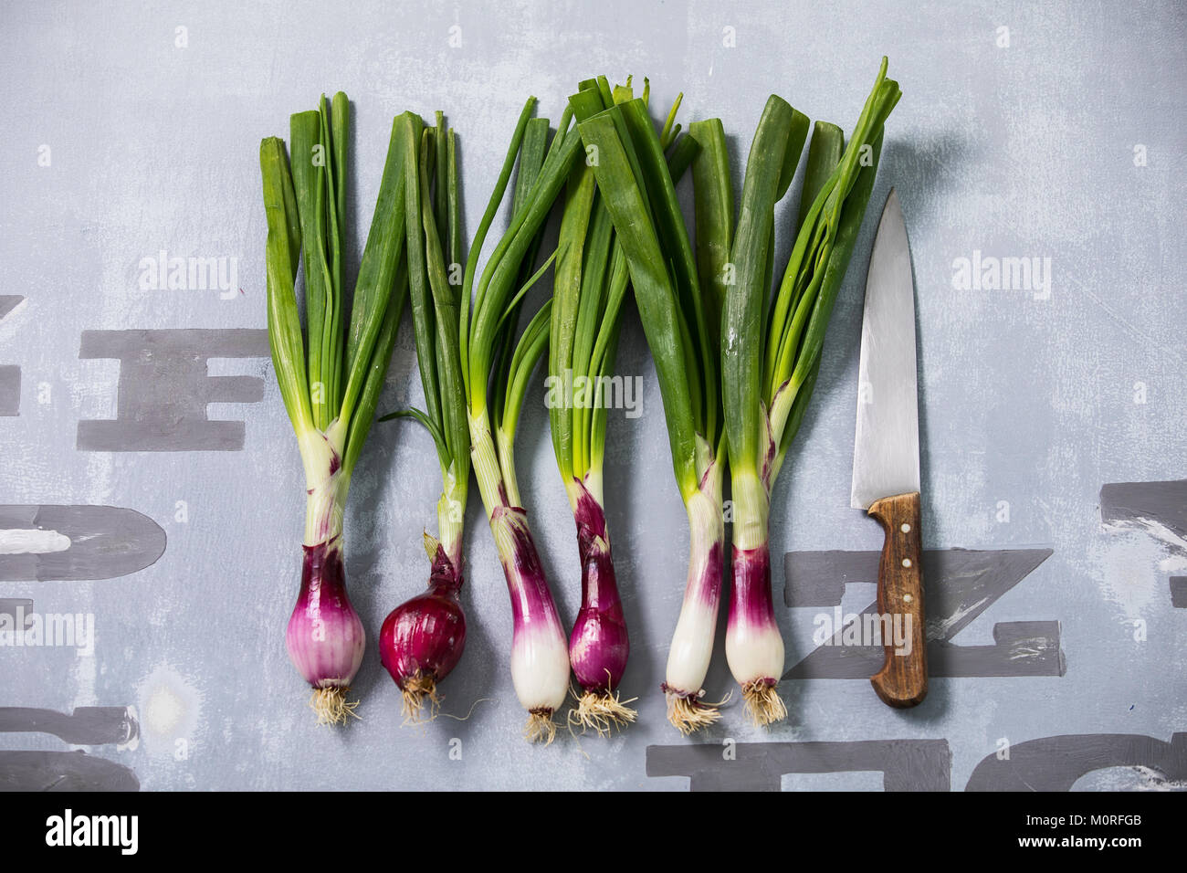 Rw of spring onions and kitchen knife - Stock Image
