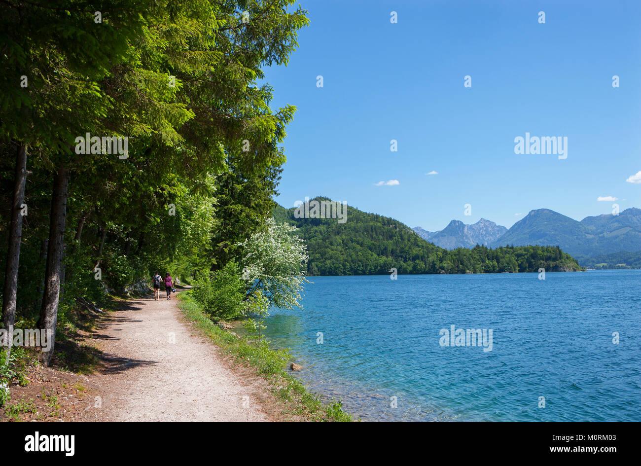 Austria, Salzkammergut, Salzburg State, Sankt Gilgen, Wolfgangsee, hikers on waterfront promenade - Stock Image