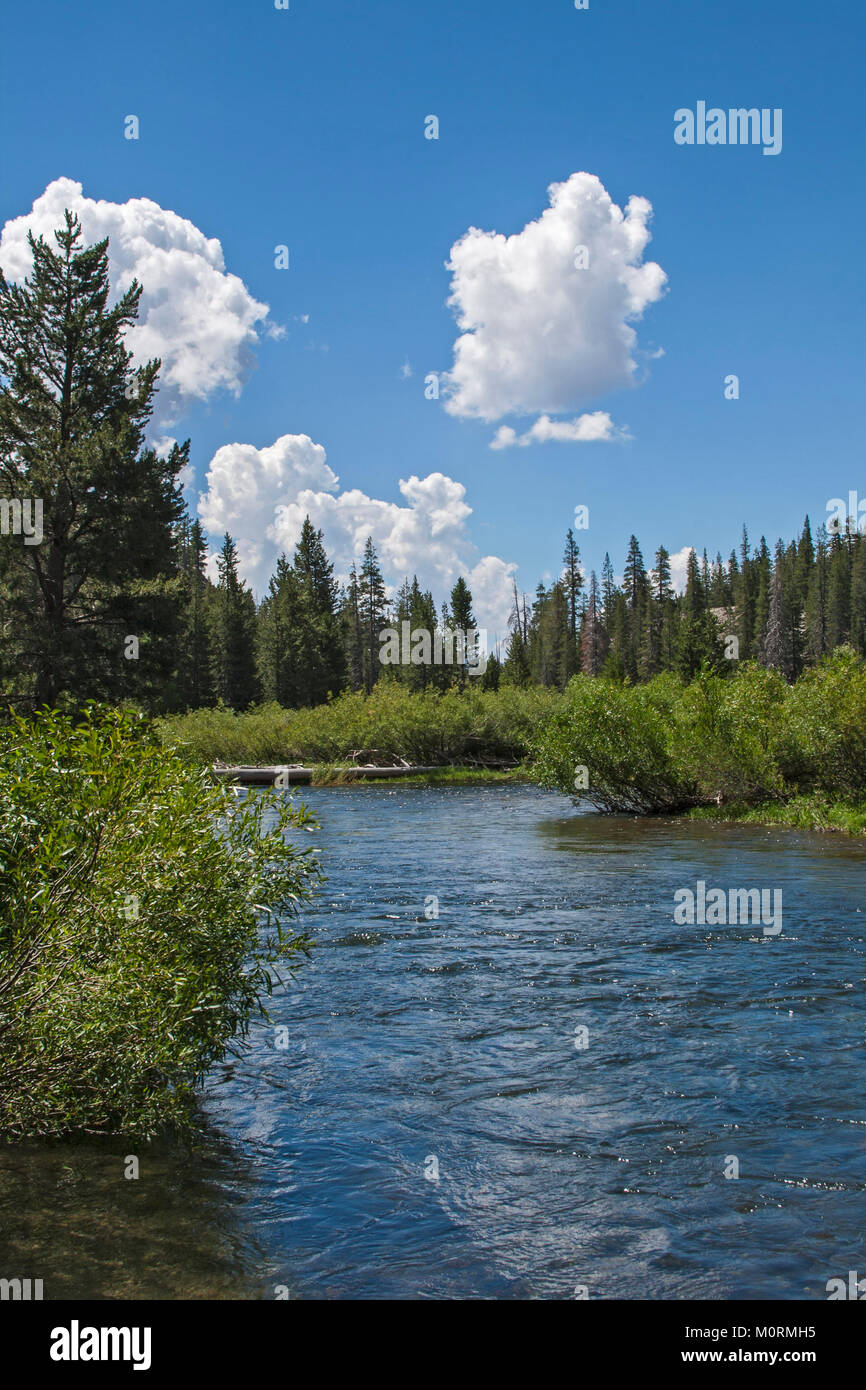 Middle Fork of the San Joaquin River, Devils Postpile National Monument, Inyo National Forest, Madera County, California, - Stock Image