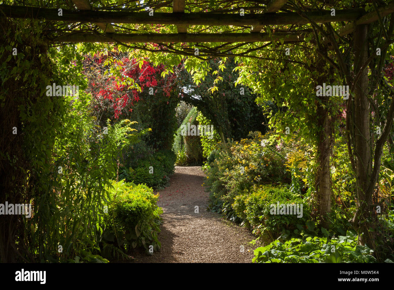 The colourful herbaceous borders in late summer seen from beneath the pergola within the walled garden of Rousham House, Oxfordshire, England. Stock Photo