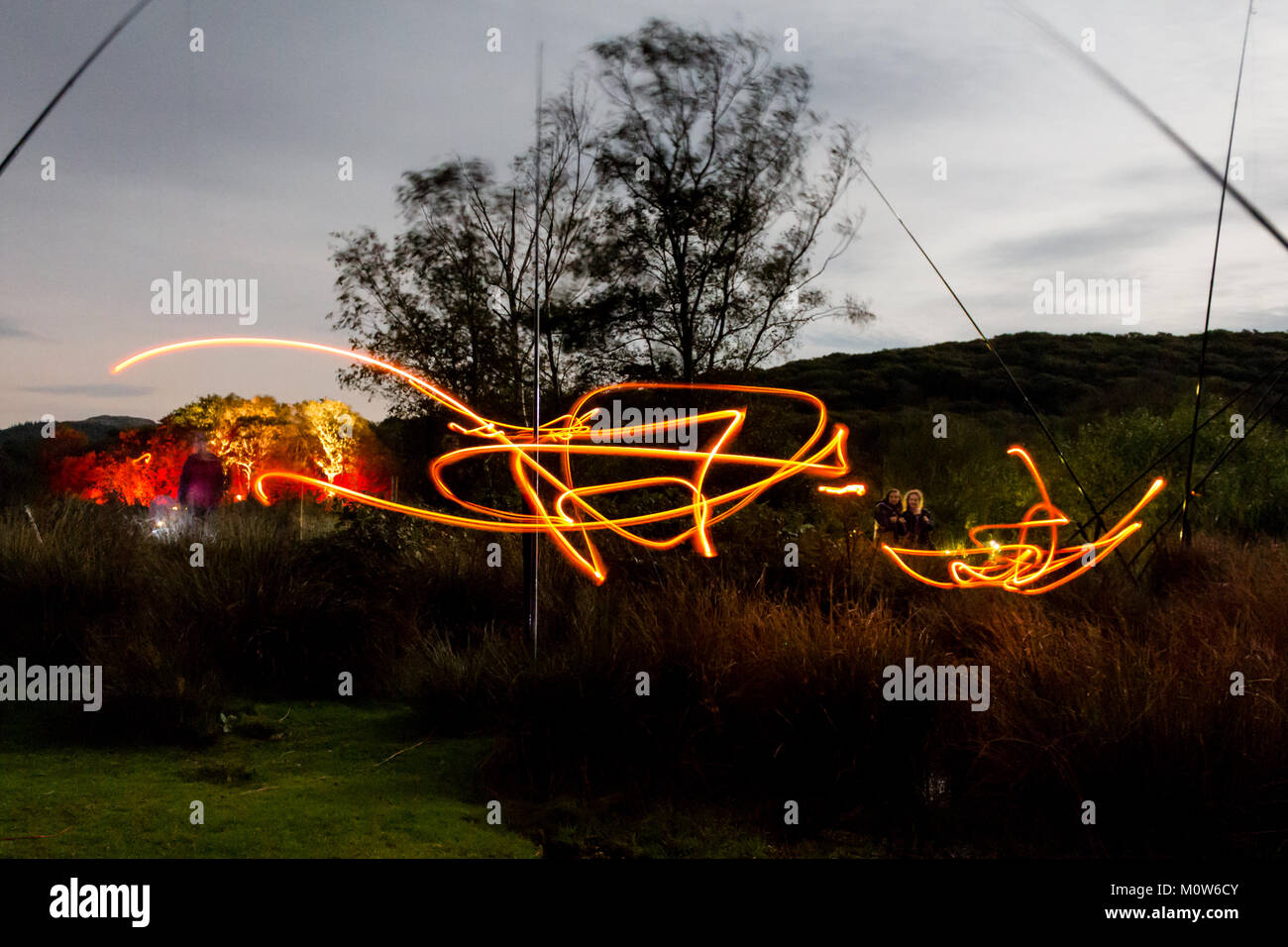 Mark Anderson Dark Spark piece Fireflies at For the birds Ynyshir rspb - Stock Image