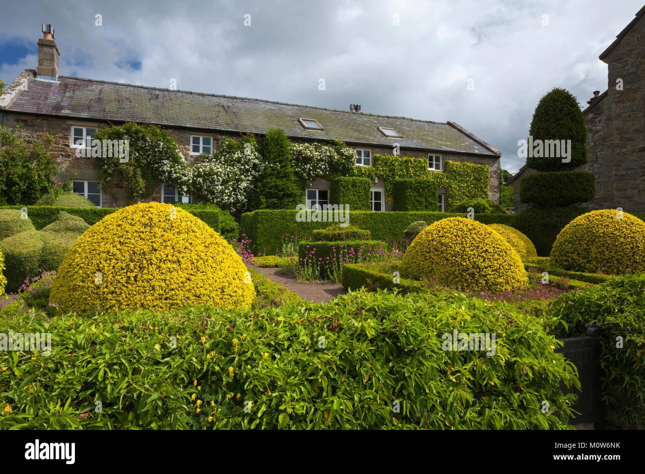 The formal garden of Herterton House with its parterre and topiary with the former Tudor Longhouse in the background, - Stock Image